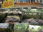 Taman Buaya Asam Kumbang