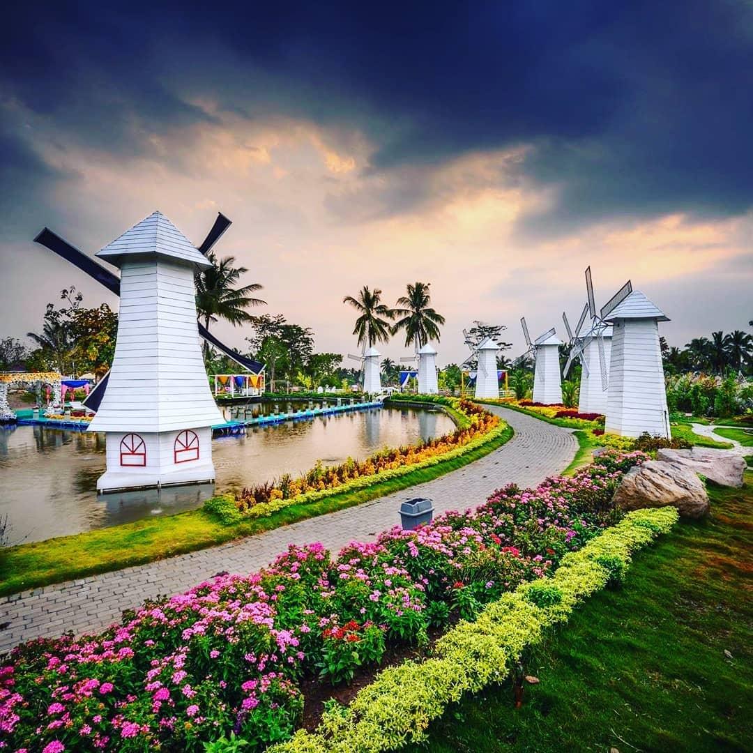 Wisata Baru Taman Bunga Alamanda Turi Sleman, Rute Lokasi Harga Tiket Masuk