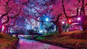 Saitama-Jepang